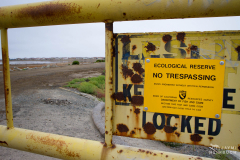 No Trespassing sign marks edge of ecological reserve for Western snowy plover (Charadrius nivosus), Milpitas, California