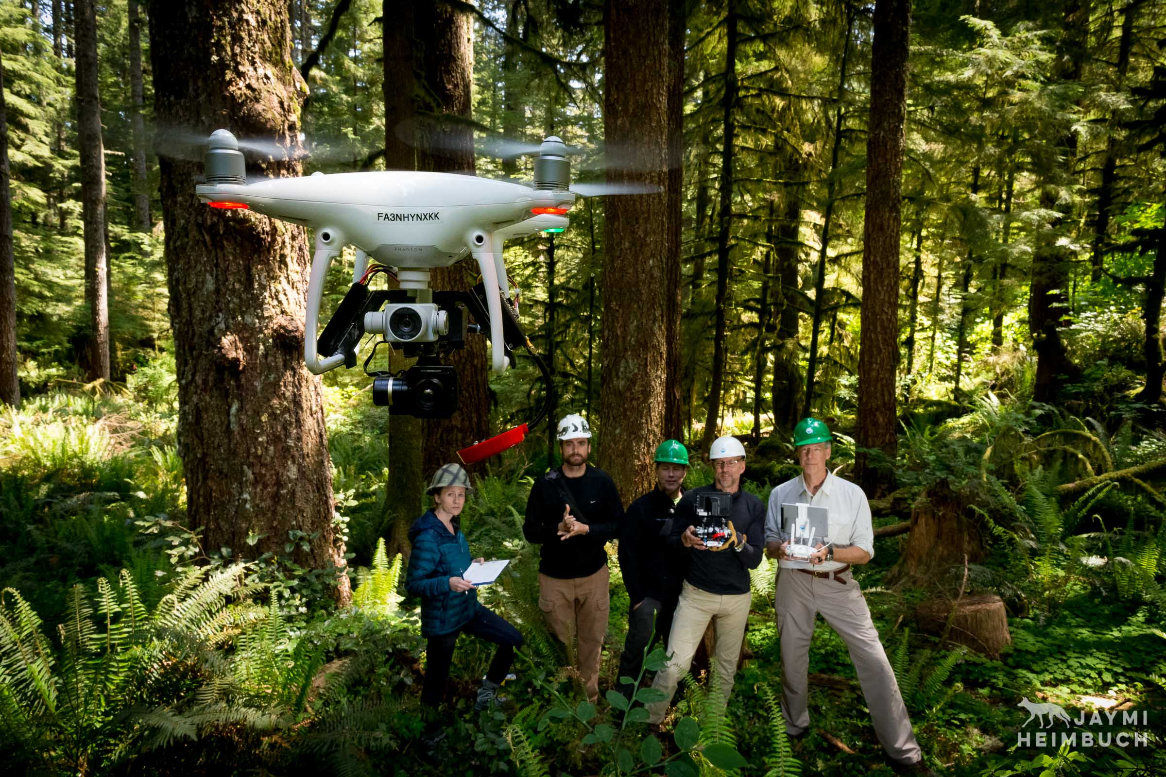 Oregon State University research team partners with Oceans Unmanned team to use drones and infrared camera technology to locate endangered marbled murrelet nests for a study. Newport, Oregon.