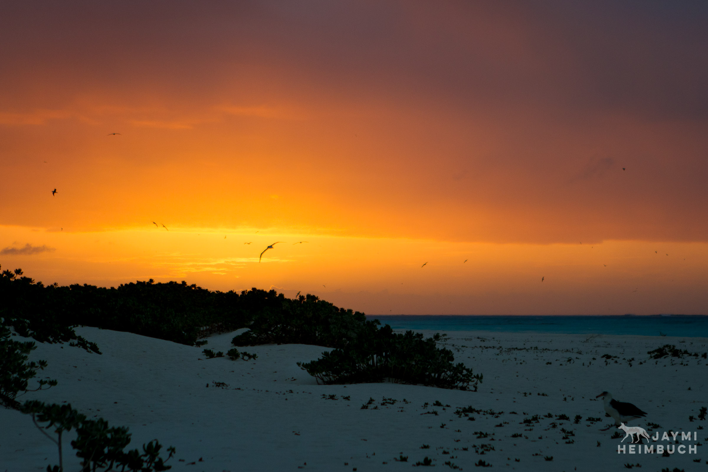 sunset on midway atoll